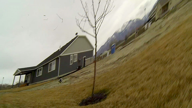 FPV camera flying left of tree...